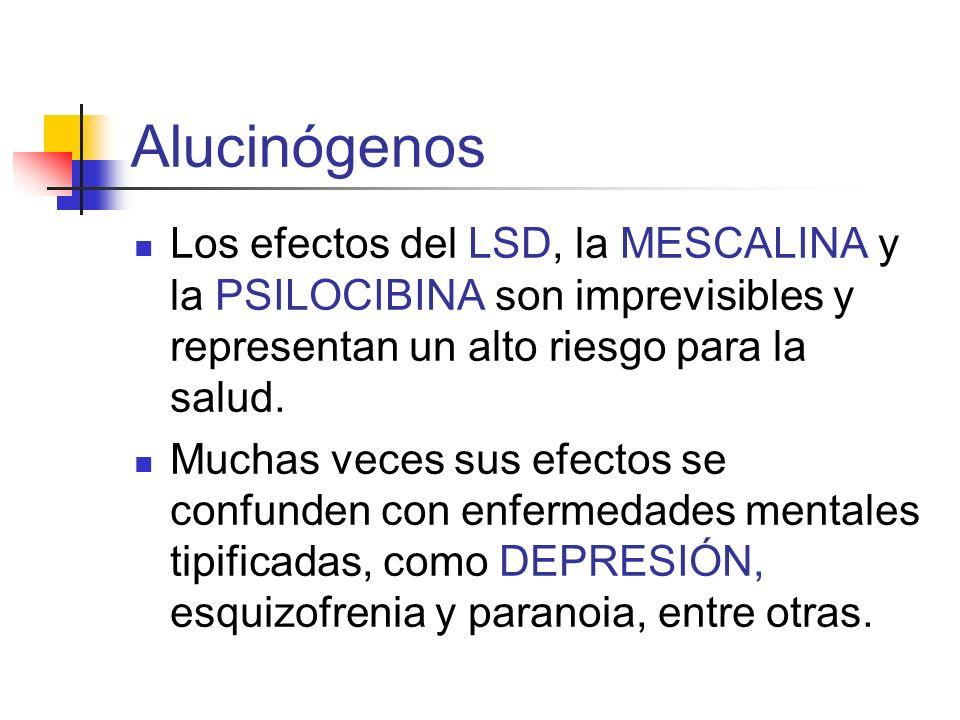 Alucinógenos Los efectos del LSD, la MESCALINA y la PSILOCIBINA son imprevisibles y representan un alto riesgo para la salud. Muchas veces sus efectos