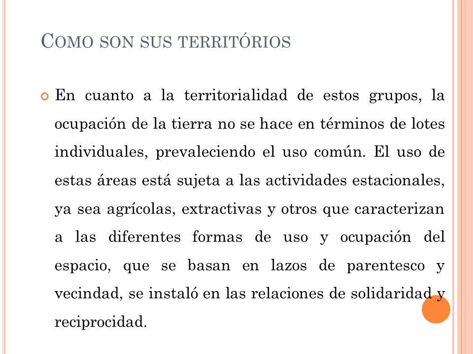 C OMO SON SUS TERRITÓRIOS En cuanto a la territorialidad de estos grupos, la ocupación de la tierra no se hace en términos de lotes individuales, prev