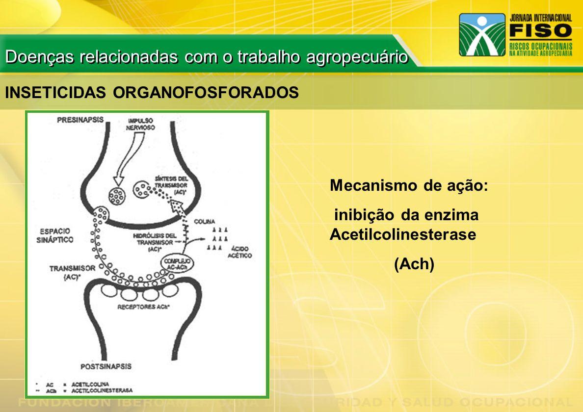 INSETICIDAS ORGANOFOSFORADOS Mecanismo de ação: inibição da enzima Acetilcolinesterase (Ach) Doenças relacionadas com o trabalho agropecuário