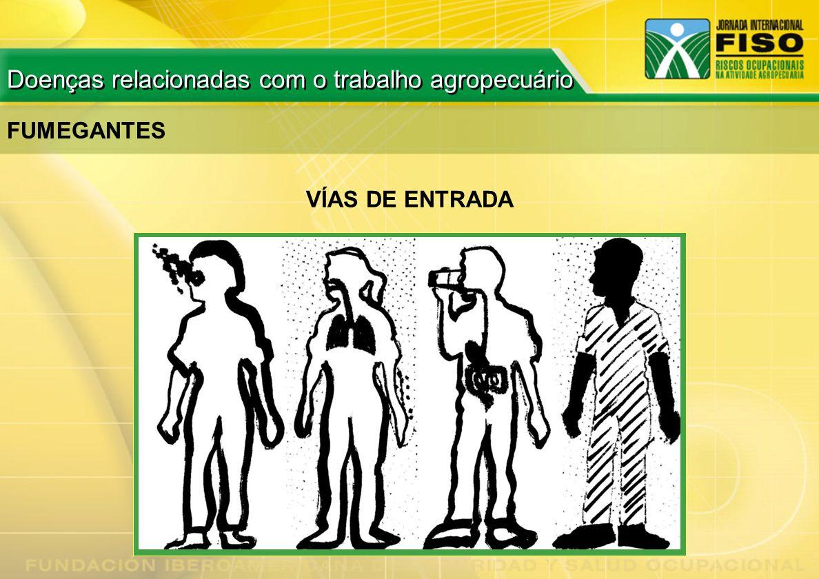 VÍAS DE ENTRADA FUMEGANTES Doenças relacionadas com o trabalho agropecuário
