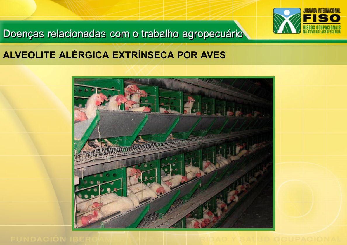 ALVEOLITE ALÉRGICA EXTRÍNSECA POR AVES Doenças relacionadas com o trabalho agropecuário