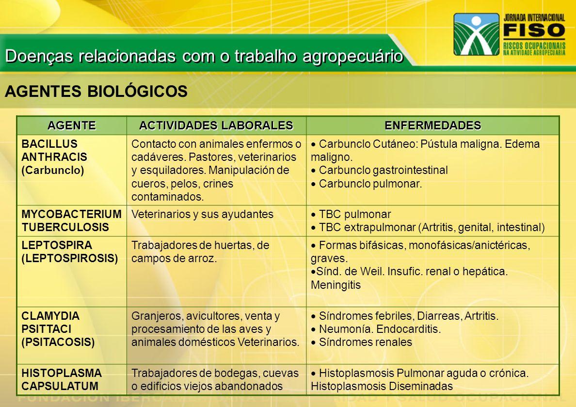 AGENTES BIOLÓGICOS AGENTE ACTIVIDADES LABORALES ENFERMEDADES BACILLUS ANTHRACIS (Carbunclo) Contacto con animales enfermos o cadáveres. Pastores, vete