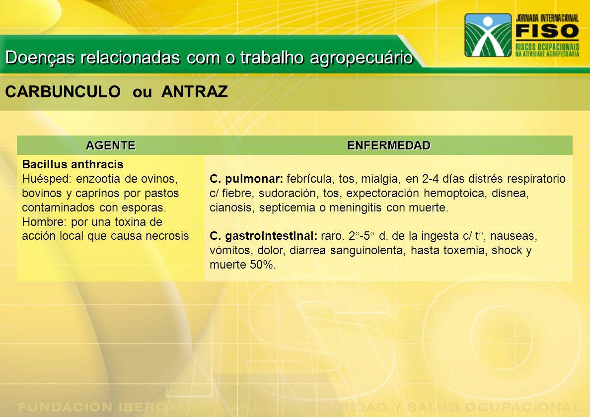 AGENTEENFERMEDAD Bacillus anthracis Huésped: enzootia de ovinos, bovinos y caprinos por pastos contaminados con esporas. Hombre: por una toxina de acc
