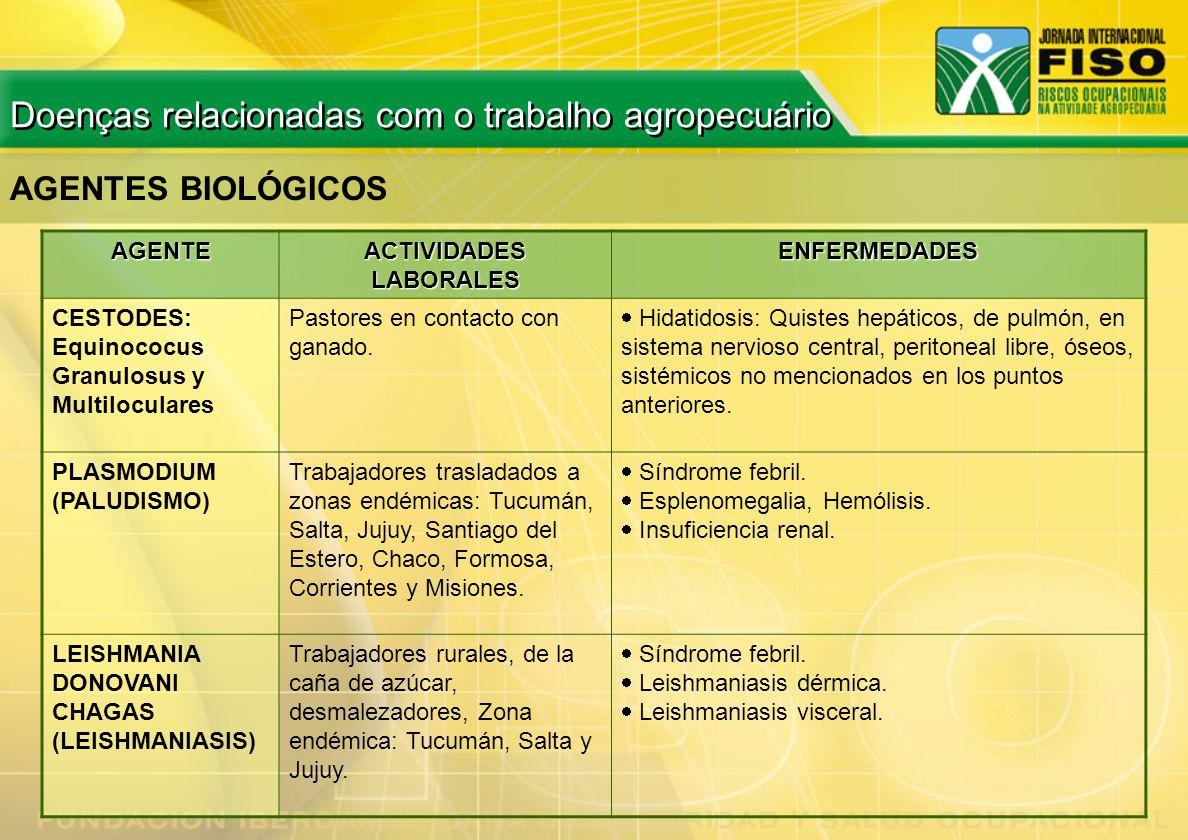 AGENTES BIOLÓGICOS AGENTE ACTIVIDADES LABORALES ENFERMEDADES CESTODES: Equinococus Granulosus y Multiloculares Pastores en contacto con ganado. Hidati