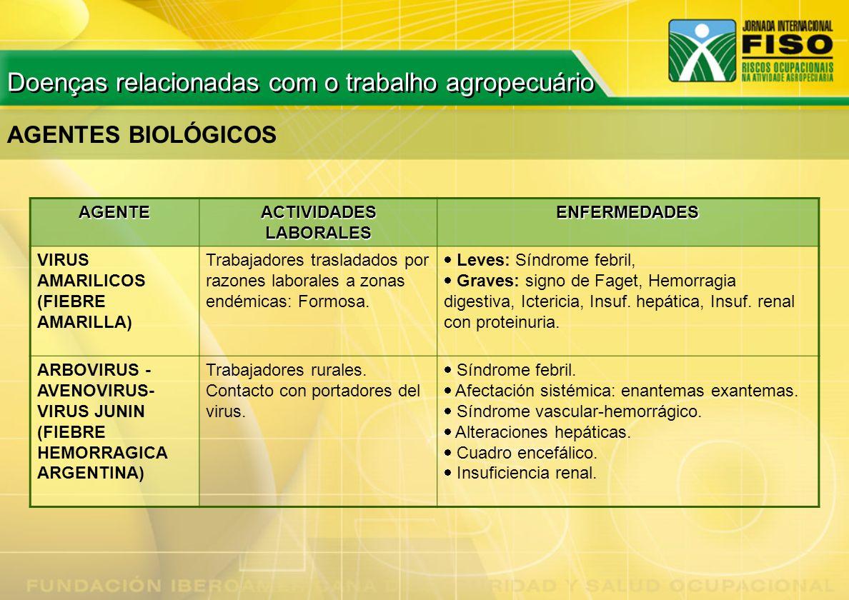 AGENTES BIOLÓGICOS AGENTE ACTIVIDADES LABORALES ENFERMEDADES VIRUS AMARILICOS (FIEBRE AMARILLA) Trabajadores trasladados por razones laborales a zonas