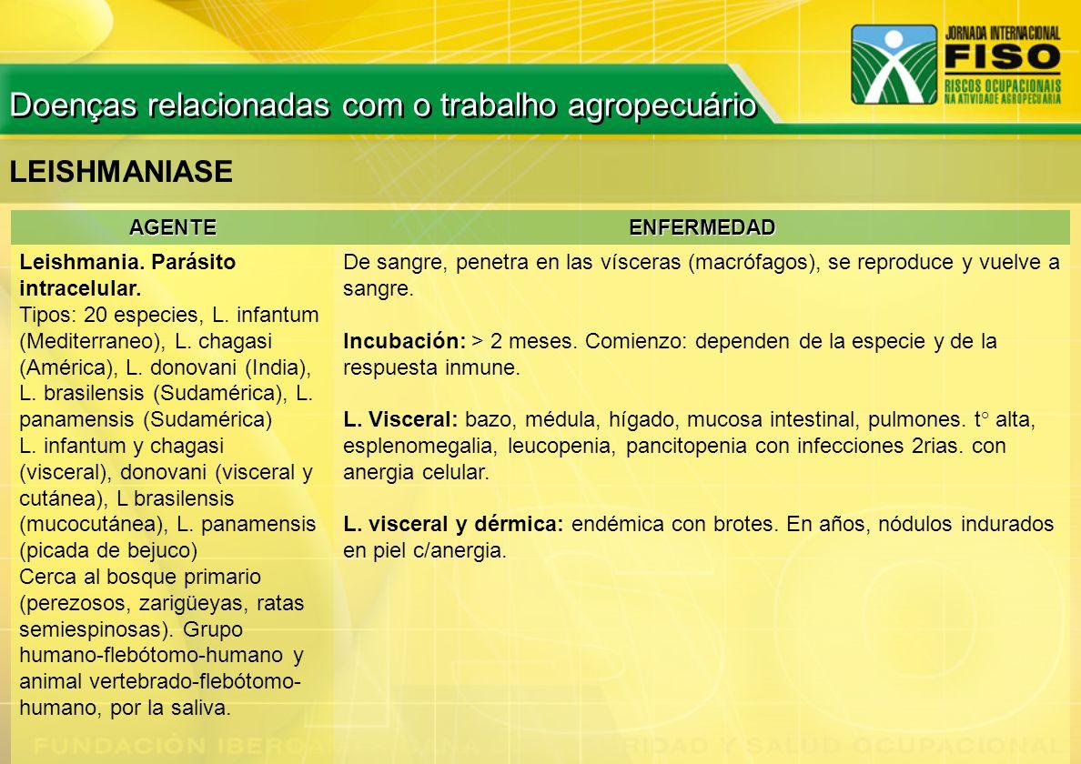 AGENTEENFERMEDAD Leishmania. Parásito intracelular. Tipos: 20 especies, L. infantum (Mediterraneo), L. chagasi (América), L. donovani (India), L. bras