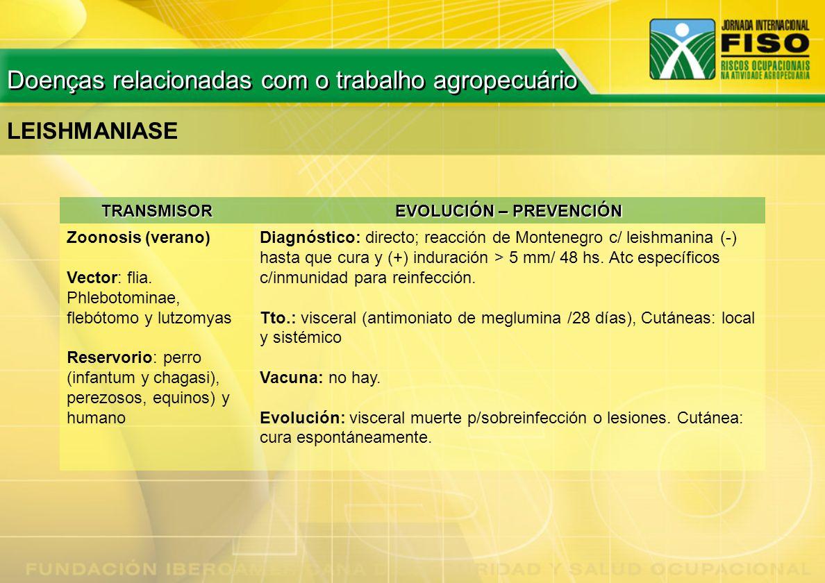 TRANSMISOR EVOLUCIÓN – PREVENCIÓN Zoonosis (verano) Vector: flia. Phlebotominae, flebótomo y lutzomyas Reservorio: perro (infantum y chagasi), perezos
