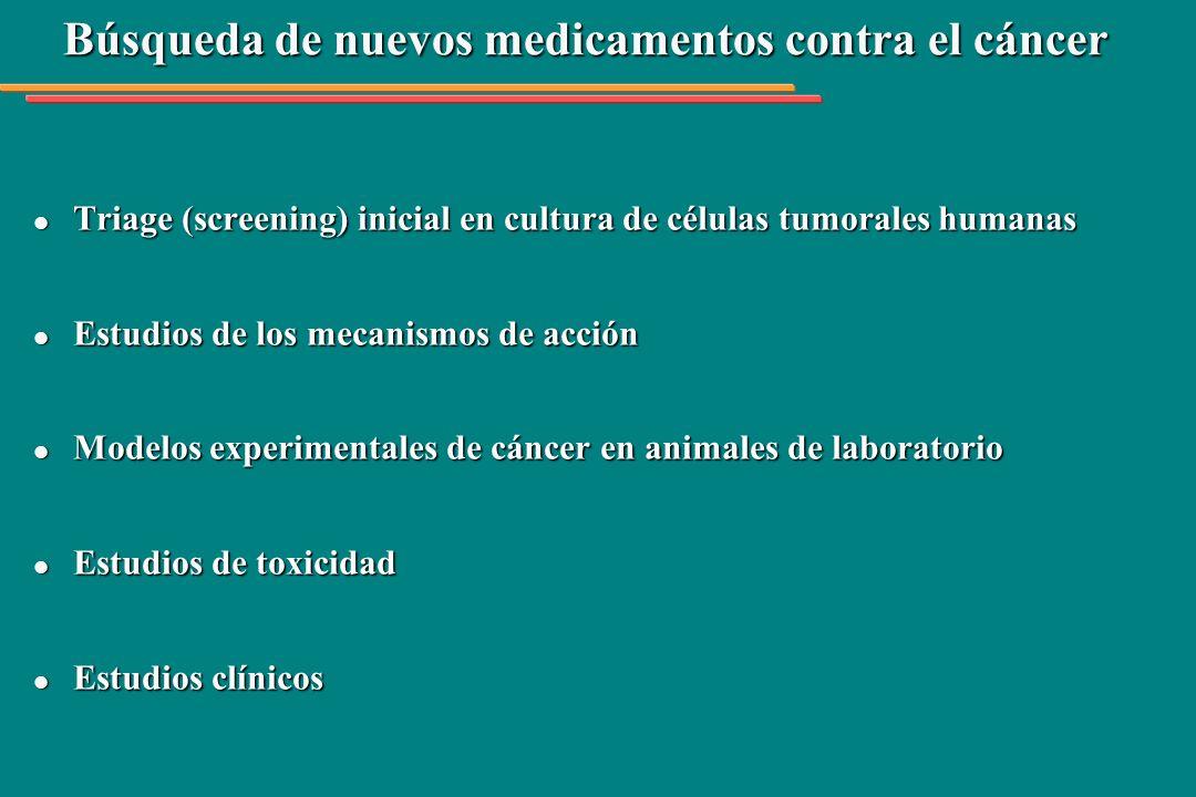 Triage (screening) inicial: líneas celulares de cáncer humano l l Leucemia (K 562) l l Pulmón (NCI H460) l l Mama (MCF 7) l l Ovario con fenotipo de resistencia a múltiplos fármacos (NCI ADR) l l Melanoma (UACC 62) l l Riñón (786 0) l l Colon (HT 29) l l Ovario(OVCAR 03) l l Próstata (PCO 3) l l Glioma (U251)