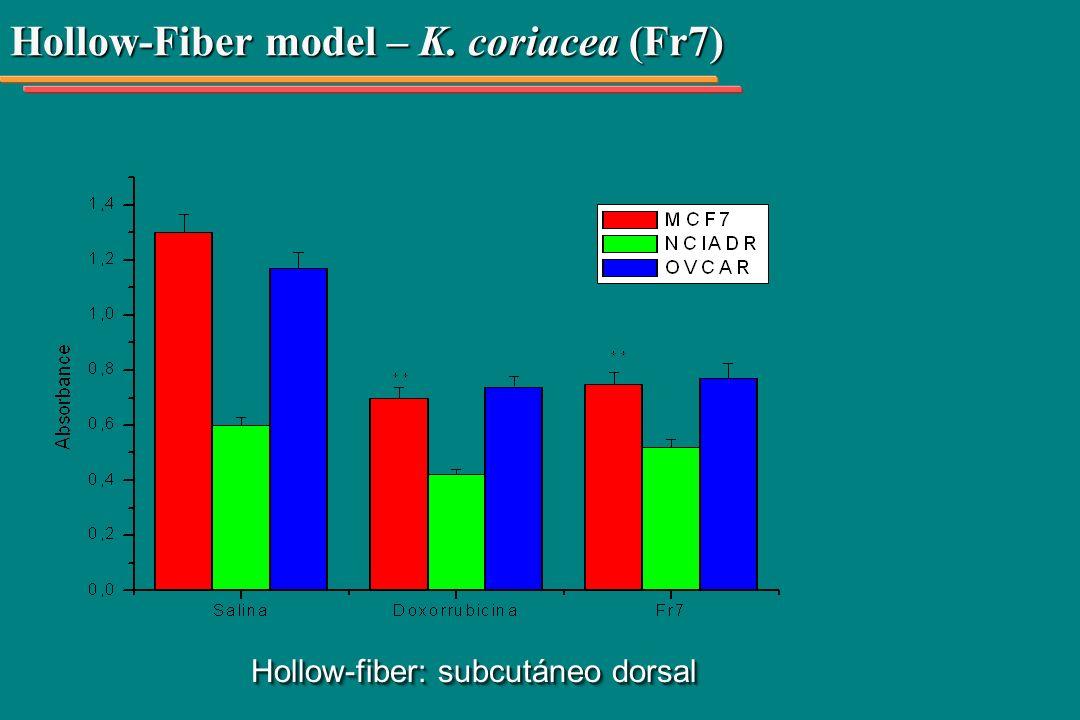 Hollow-Fiber model – K. coriacea (Fr7) Hollow-fiber: subcutáneo dorsal