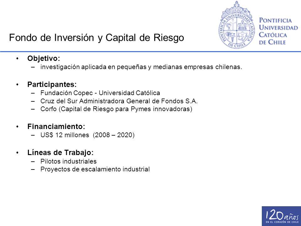 Objetivo: –investigación aplicada en pequeñas y medianas empresas chilenas. Participantes: –Fundación Copec - Universidad Católica –Cruz del Sur Admin