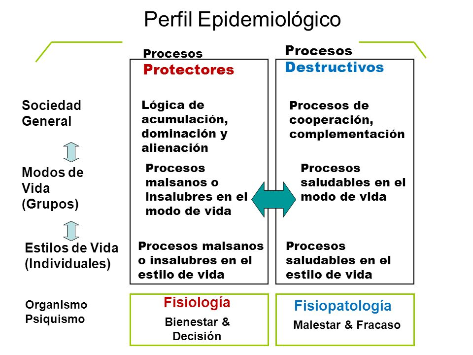 Procesos Protectores Procesos Destructivos Sociedad General Modos de Vida (Grupos) Estilos de Vida (Individuales) Perfil Epidemiológico Organismo Psiq