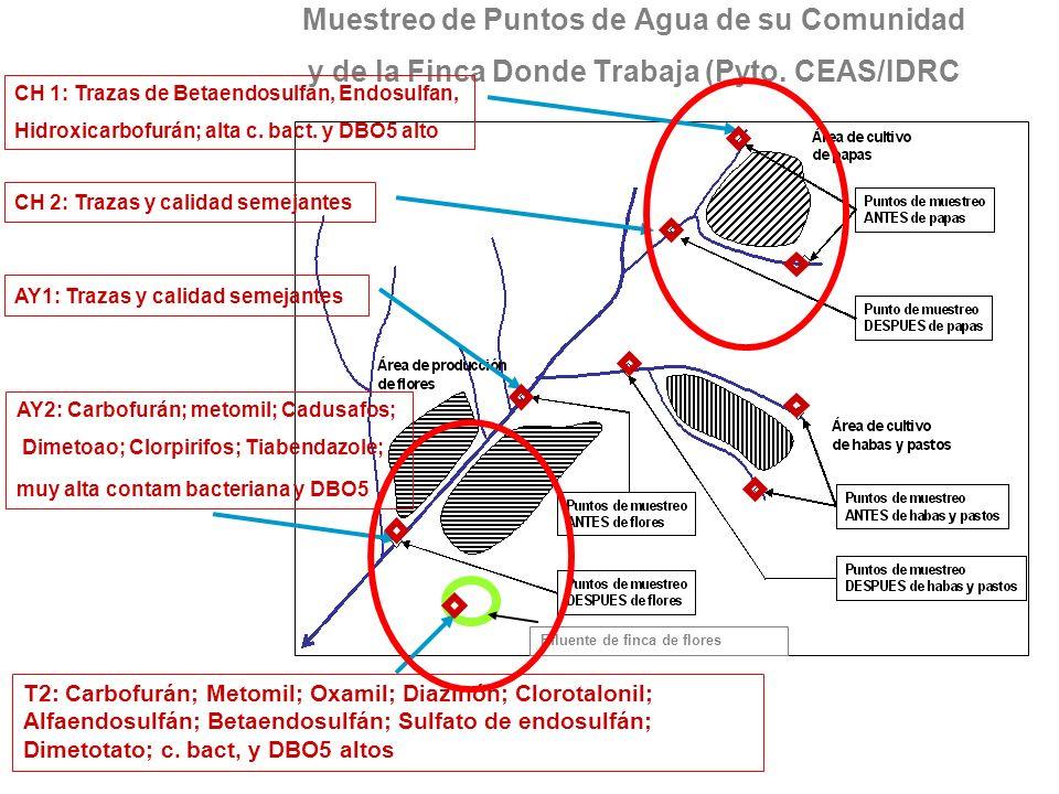 Muestreo de Puntos de Agua de su Comunidad y de la Finca Donde Trabaja (Pyto. CEAS/IDRC CH 1: Trazas de Betaendosulfan, Endosulfan, Hidroxicarbofurán;