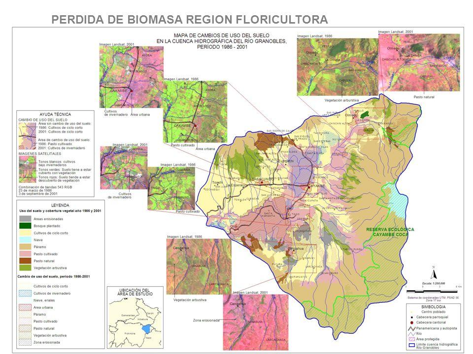 PERDIDA DE BIOMASA REGION FLORICULTORA