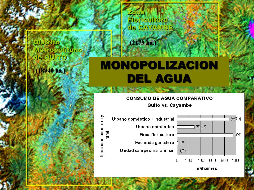 Distrito Metropolitano de QUITO Zona Floricultora de CAYAMBE (18940 ha.) (2179 ha.) MONOPOLIZACION DEL AGUA