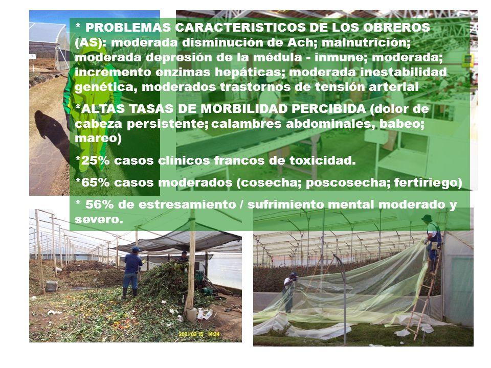 * PROBLEMAS CARACTERISTICOS DE LOS OBREROS (AS): moderada disminución de Ach; malnutrición; moderada depresión de la médula - inmune; moderada; increm