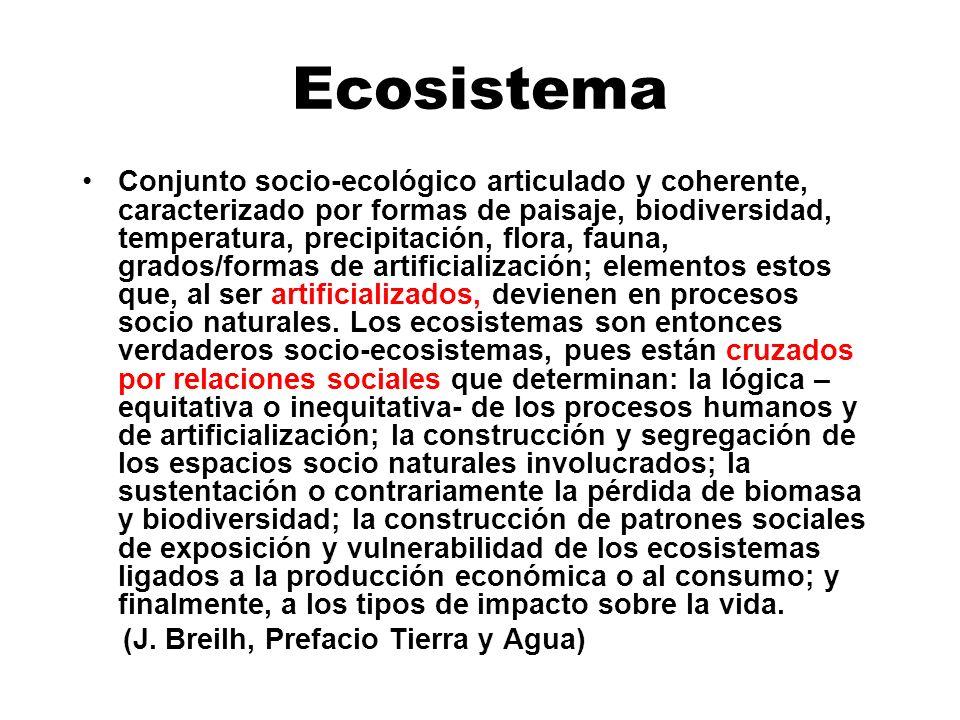 Ecosistema Conjunto socio-ecológico articulado y coherente, caracterizado por formas de paisaje, biodiversidad, temperatura, precipitación, flora, fau