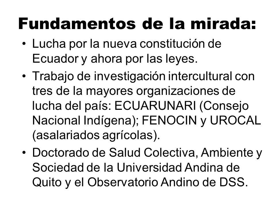 Fundamentos de la mirada: Lucha por la nueva constitución de Ecuador y ahora por las leyes. Trabajo de investigación intercultural con tres de la mayo