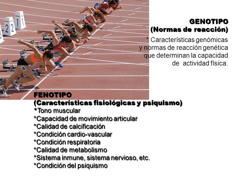 * Características genómicas y normas de reacción genética que determinan la capacidad de actividad física. GENOTIPO (Normas de reacción) FENOTIPO (Car