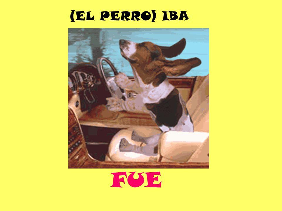 FUE (EL PERRO) IBA