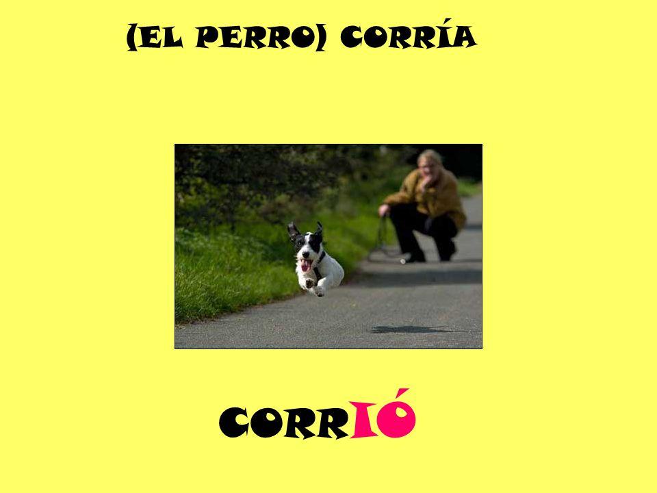CORR IÓ (EL PERRO) CORRÍA
