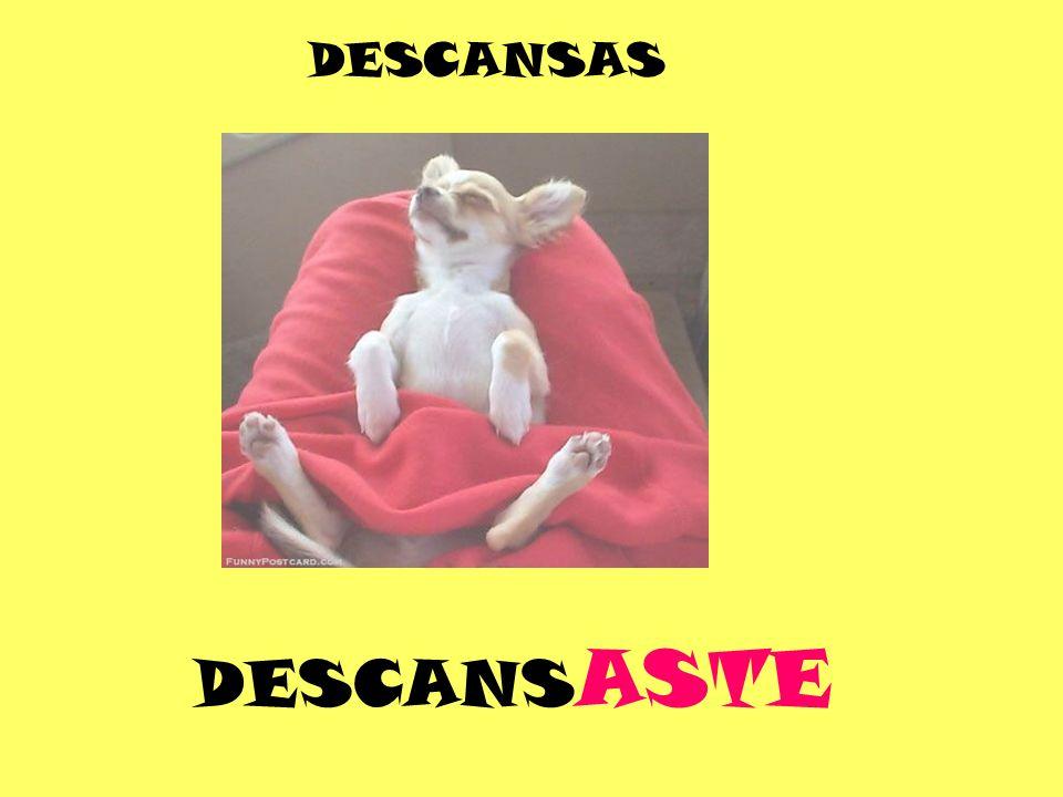 DESCANS ASTE DESCANSAS