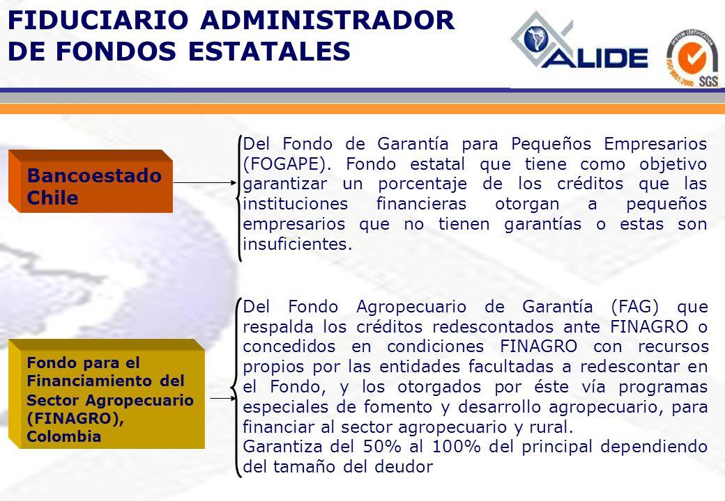 Del Fondo de Garantía para Pequeños Empresarios (FOGAPE). Fondo estatal que tiene como objetivo garantizar un porcentaje de los créditos que las insti