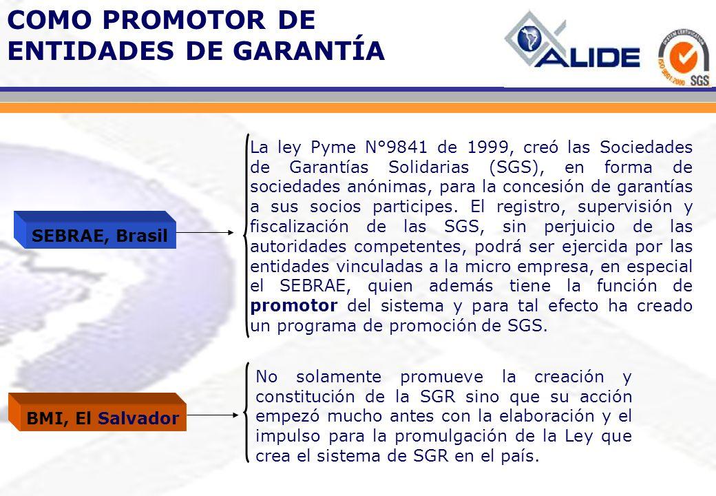 La ley Pyme N°9841 de 1999, creó las Sociedades de Garantías Solidarias (SGS), en forma de sociedades anónimas, para la concesión de garantías a sus s