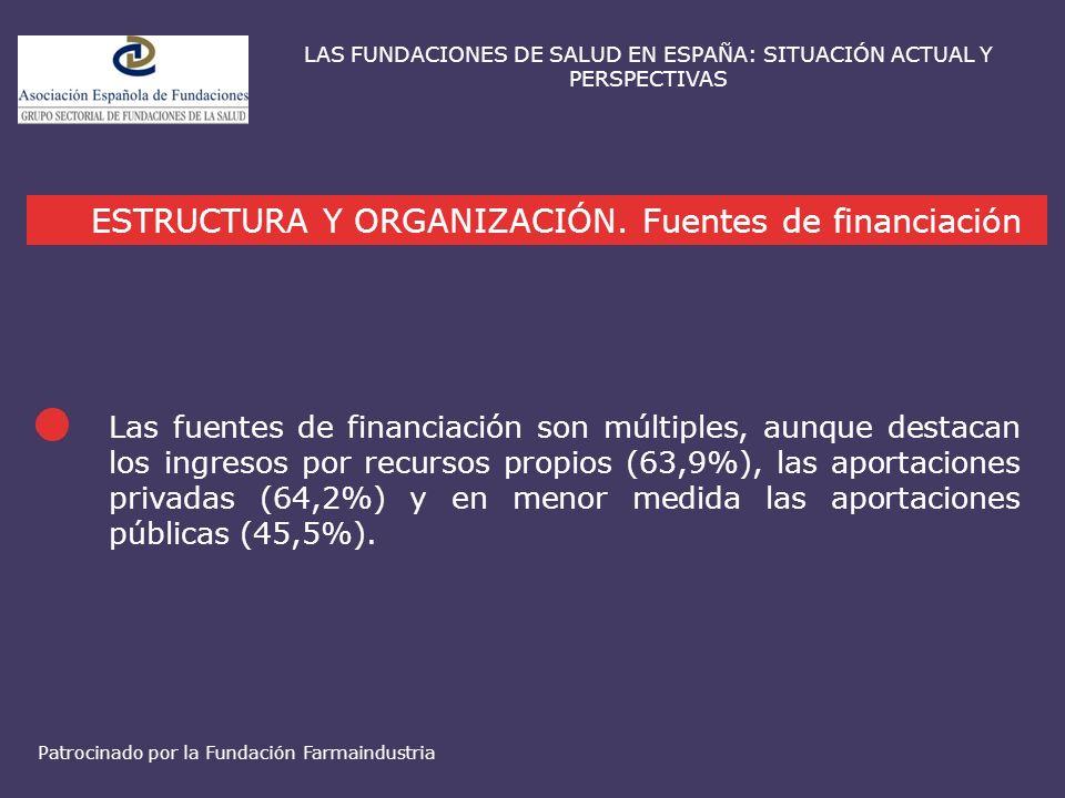 ESTRUCTURA Y ORGANIZACIÓN. Fuentes de financiación LAS FUNDACIONES DE SALUD EN ESPAÑA: SITUACIÓN ACTUAL Y PERSPECTIVAS Las fuentes de financiación son