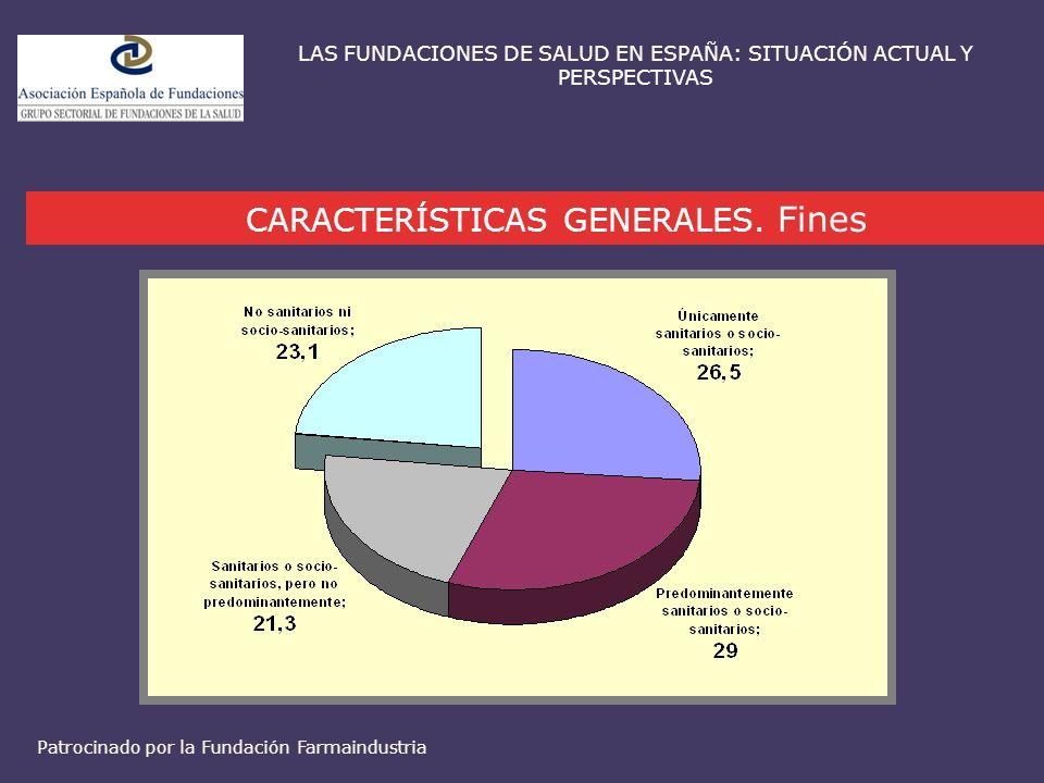CARACTERÍSTICAS GENERALES. Fines LAS FUNDACIONES DE SALUD EN ESPAÑA: SITUACIÓN ACTUAL Y PERSPECTIVAS Patrocinado por la Fundación Farmaindustria