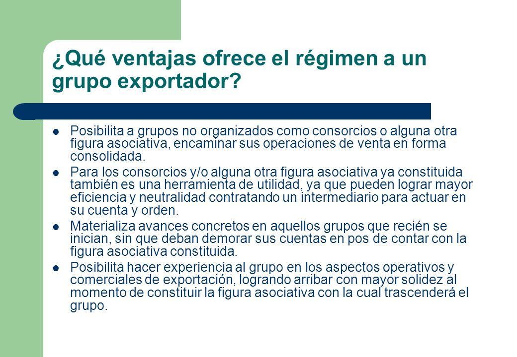 ¿Qué ventajas ofrece el régimen a un grupo exportador? Posibilita a grupos no organizados como consorcios o alguna otra figura asociativa, encaminar s