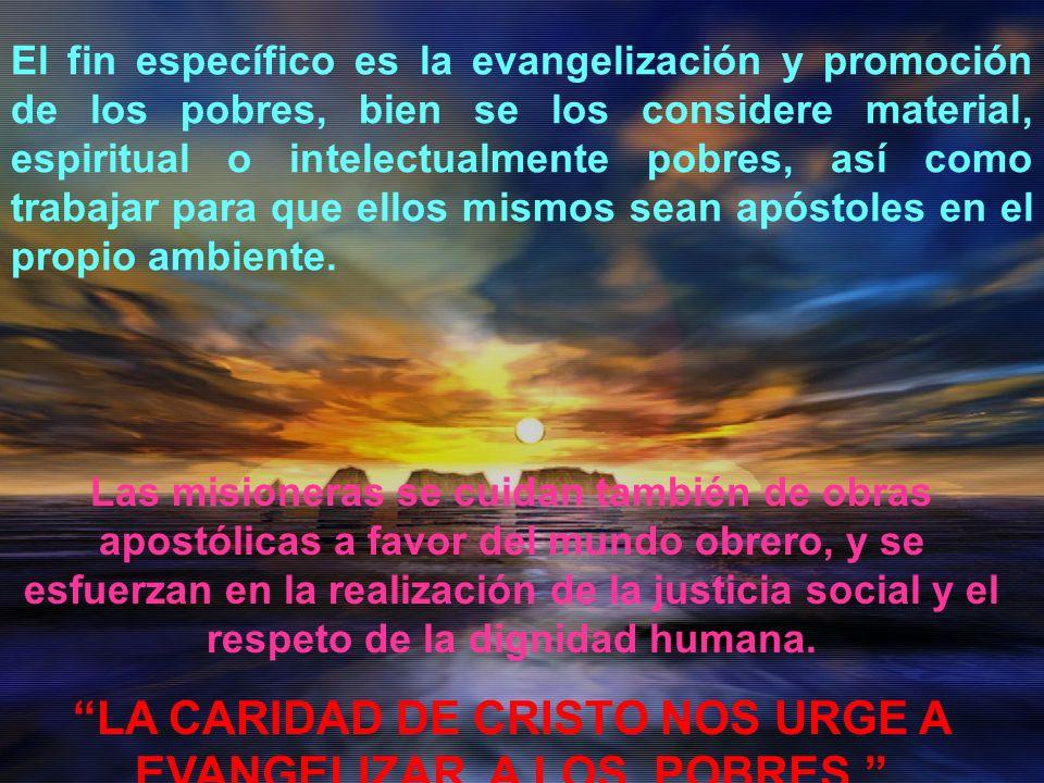 El fin específico es la evangelización y promoción de los pobres, bien se los considere material, espiritual o intelectualmente pobres, así como trabajar para que ellos mismos sean apóstoles en el propio ambiente.