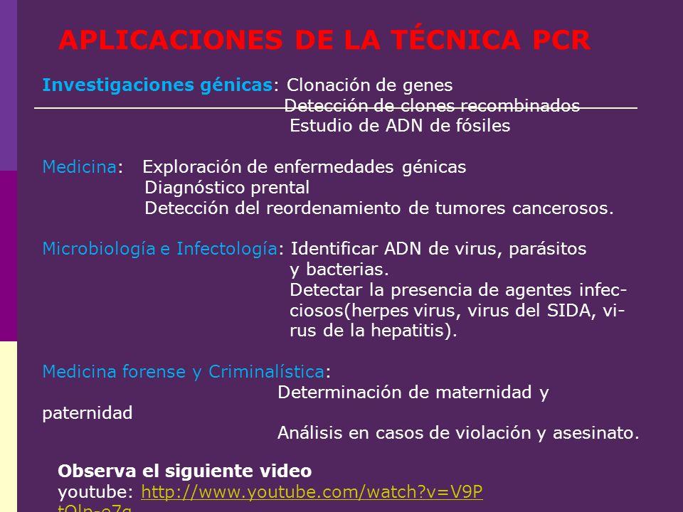 Observa el siguiente video youtube: http://www.youtube.com/watch?v=V9P tQlp-e7ghttp://www.youtube.com/watch?v=V9P tQlp-e7g APLICACIONES DE LA TÉCNICA