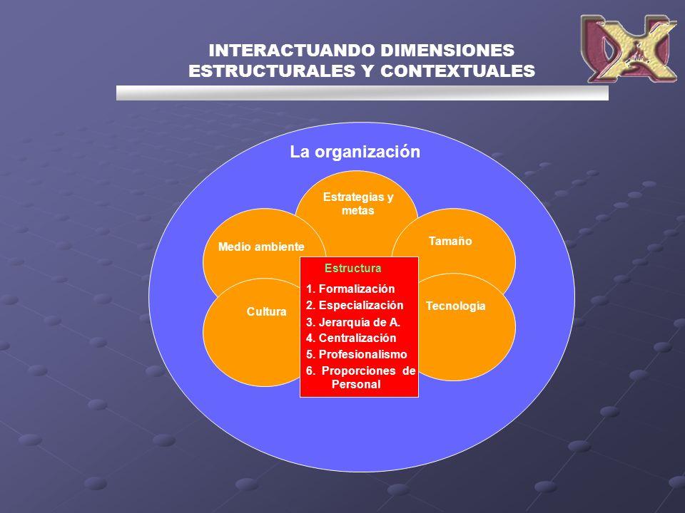 INTERACTUANDO DIMENSIONES ESTRUCTURALES Y CONTEXTUALES La organización Estrategias y metas Tamaño Tecnología Medio ambiente Cultura Estructura 1. Form