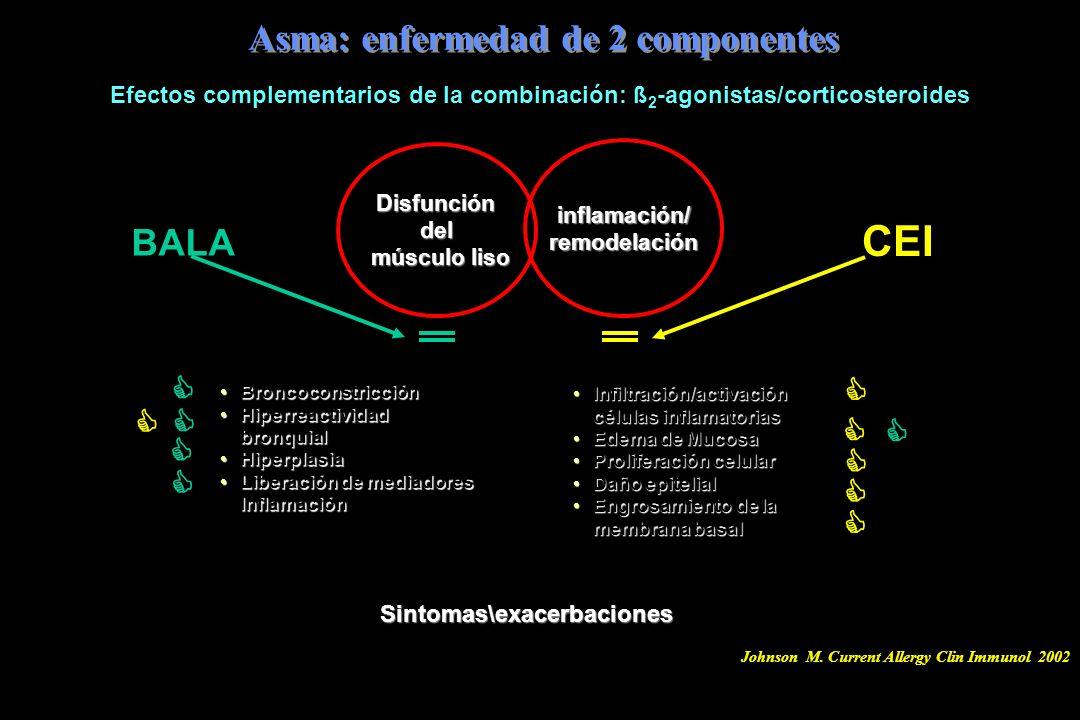 Efectos complementarios de la combinación: ß 2 -agonistas/corticosteroides Asma: enfermedad de 2 componentes Infiltración/activación células inflamato