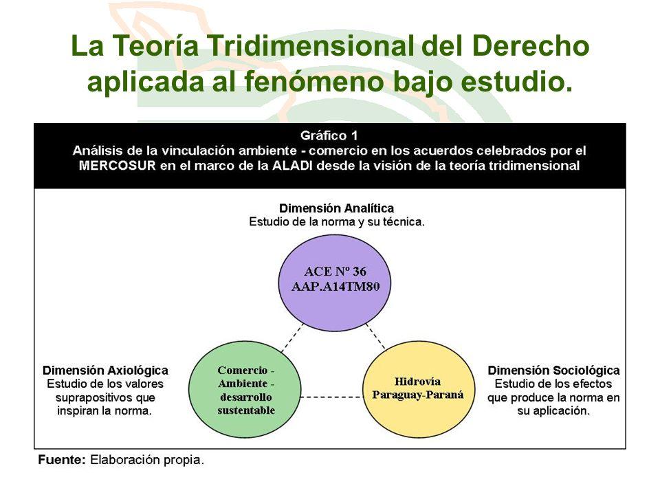 La Teoría Tridimensional del Derecho aplicada al fenómeno bajo estudio.