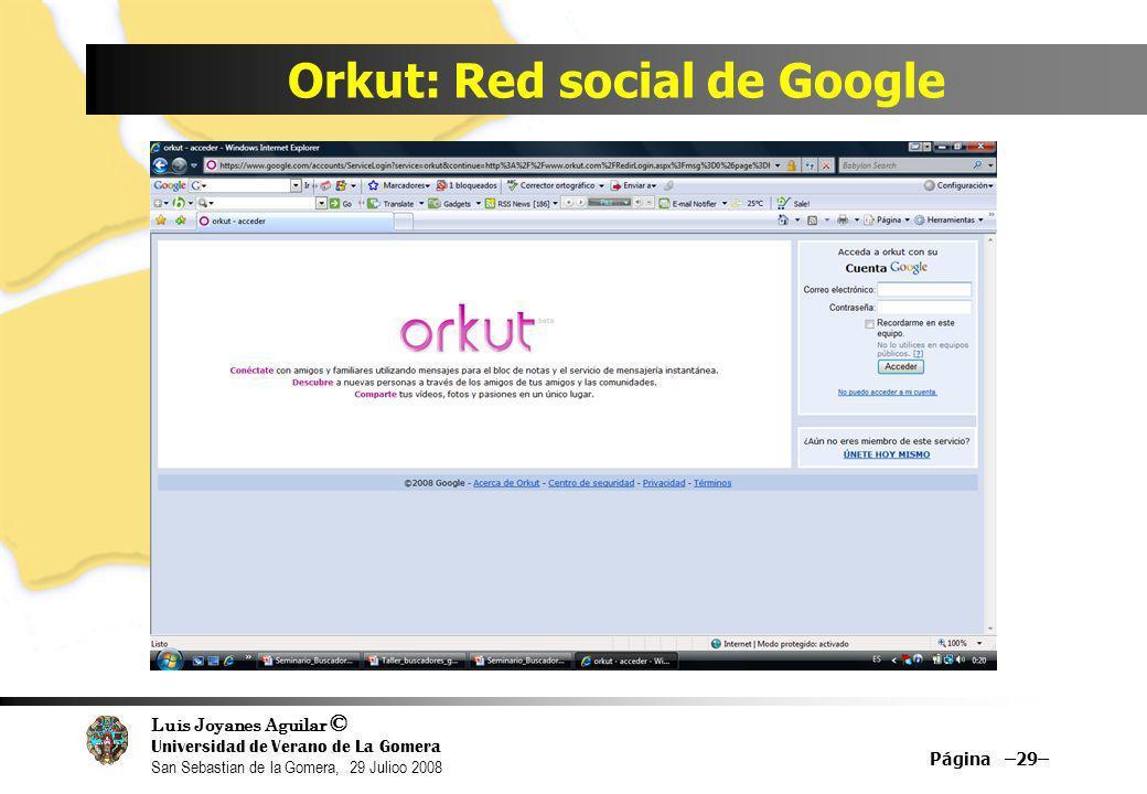 Luis Joyanes Aguilar © Universidad de Verano de La Gomera San Sebastian de la Gomera, 29 Julioo 2008 Orkut: Red social de Google Página –29–