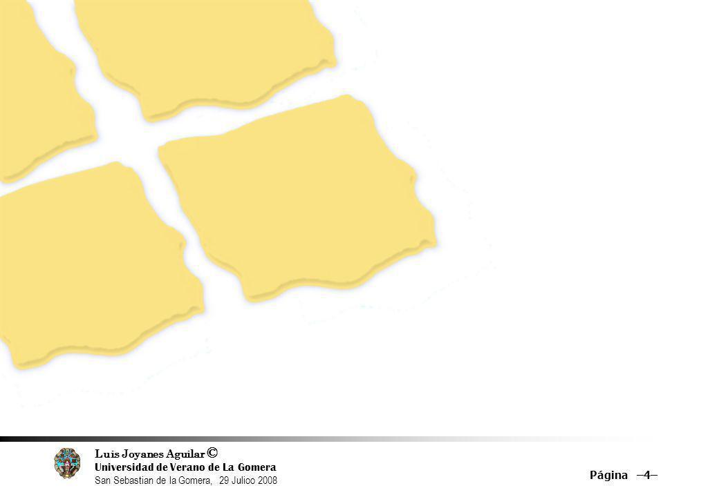 Luis Joyanes Aguilar © Universidad de Verano de La Gomera San Sebastian de la Gomera, 29 Julioo 2008 Características notables: Sencillez de uso y rapidez en la presentación de resultados Ordena sus resultados mediante un algoritmo matemático Page Rank que tiene en cuenta múltiples factores, entre ellos: la relevancia de cada página o el número de enlaces que apuntan a una página web.