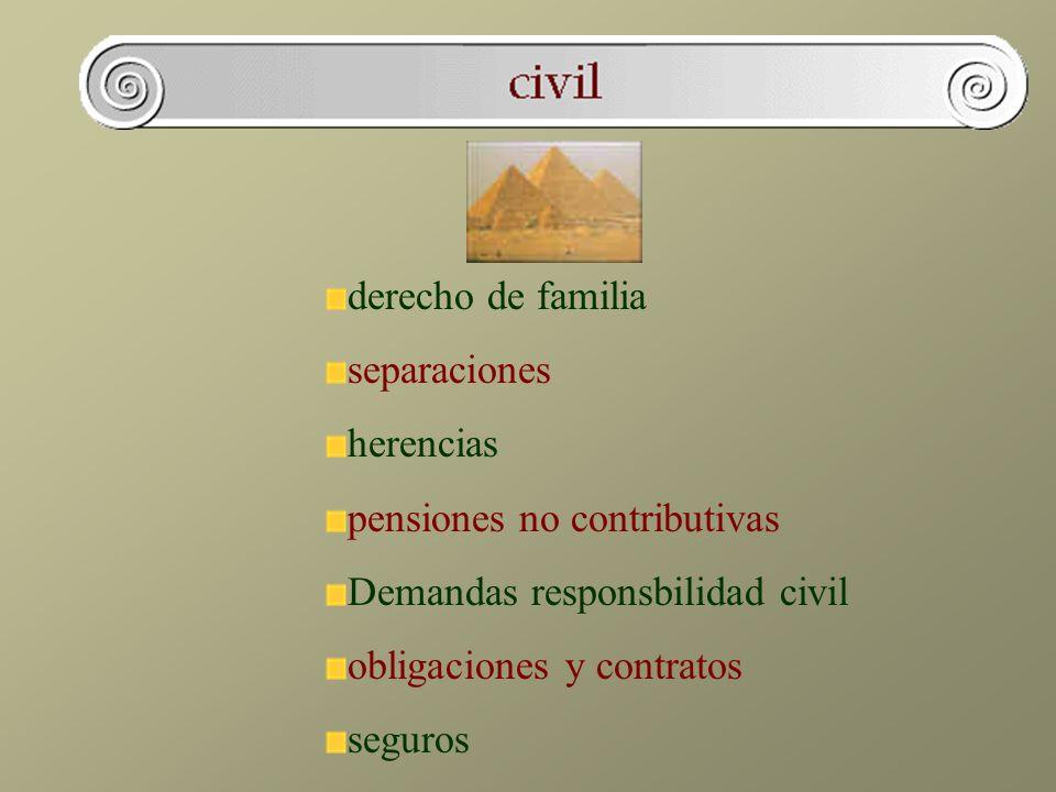 derecho de familia separaciones herencias pensiones no contributivas Demandas responsbilidad civil obligaciones y contratos seguros