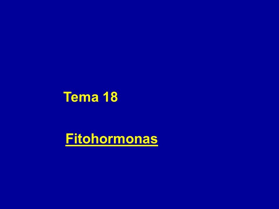 Tema 18 Fitohormonas