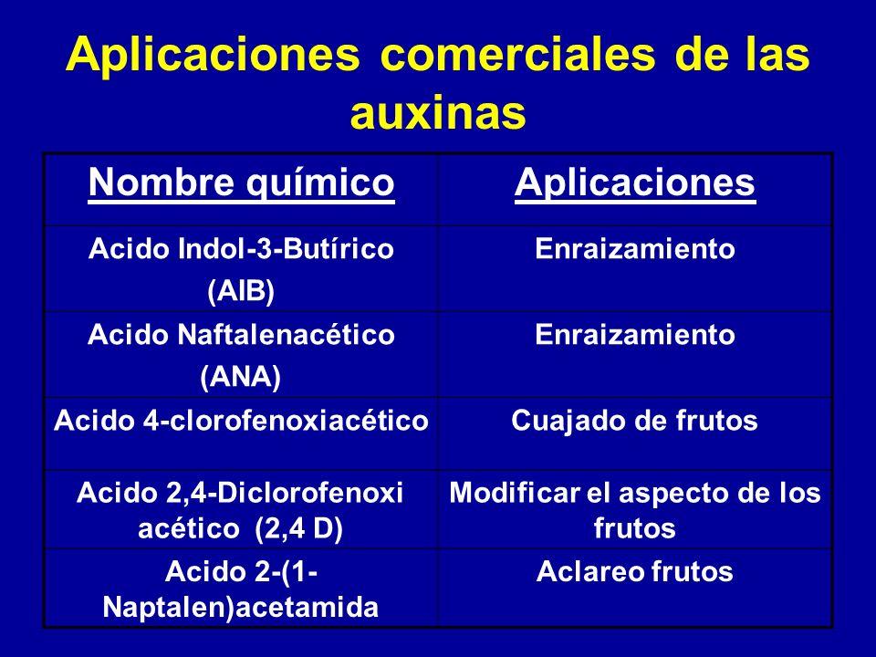 Aplicaciones comerciales de las auxinas Nombre químicoAplicaciones Acido Indol-3-Butírico (AIB) Enraizamiento Acido Naftalenacético (ANA) Enraizamient