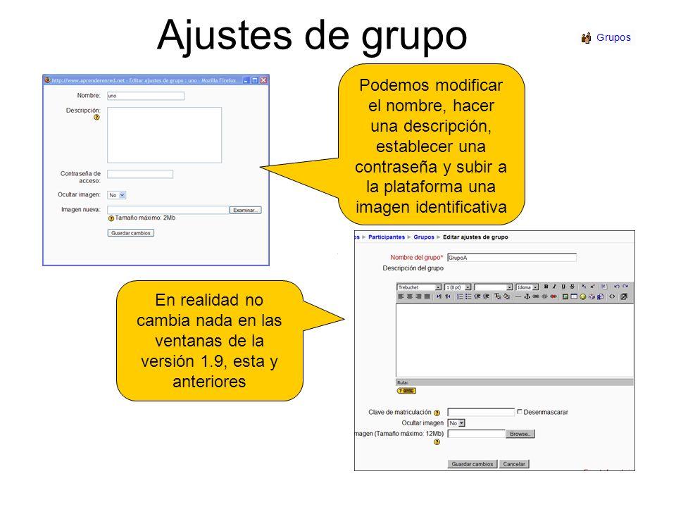 Ajustes de grupo Podemos modificar el nombre, hacer una descripción, establecer una contraseña y subir a la plataforma una imagen identificativa En re