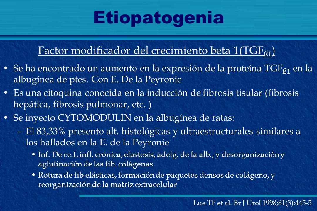 Etiopatogenia Se ha encontrado un aumento en la expresión de la proteína TGF ß1 en la albugínea de ptes. Con E. De la Peyronie Es una citoquina conoci