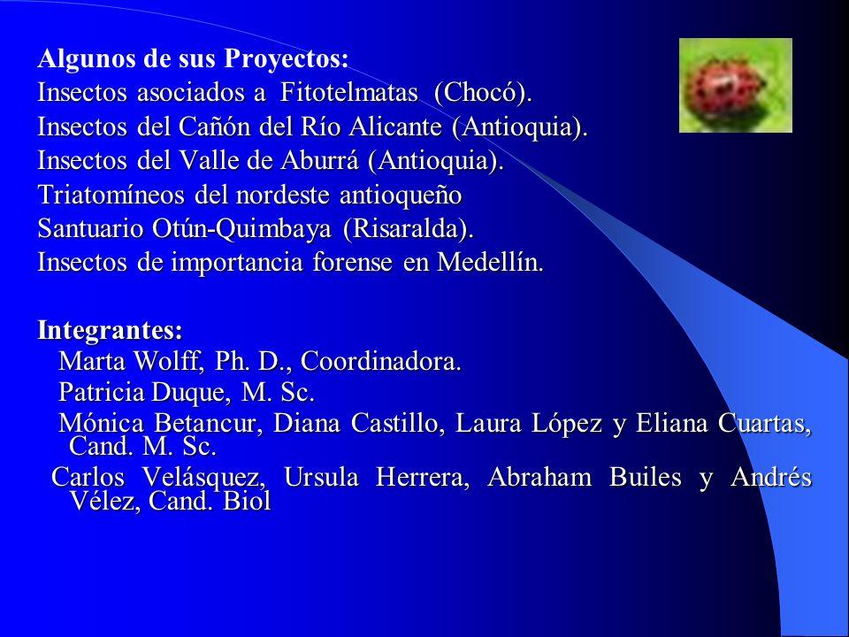 Algunos de sus Proyectos: Insectos asociados a Fitotelmatas (Chocó). Insectos del Cañón del Río Alicante (Antioquia). Insectos del Valle de Aburrá (An