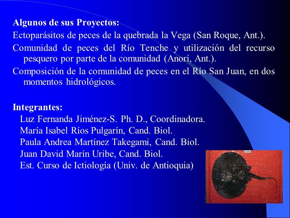 Algunos de sus Proyectos: Ectoparásitos de peces de la quebrada la Vega (San Roque, Ant.). Comunidad de peces del Río Tenche y utilización del recurso