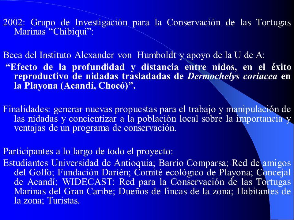 2002: Grupo de Investigación para la Conservación de las Tortugas Marinas Chibiquí: Beca del Instituto Alexander von Humboldt y apoyo de la U de A: Ef