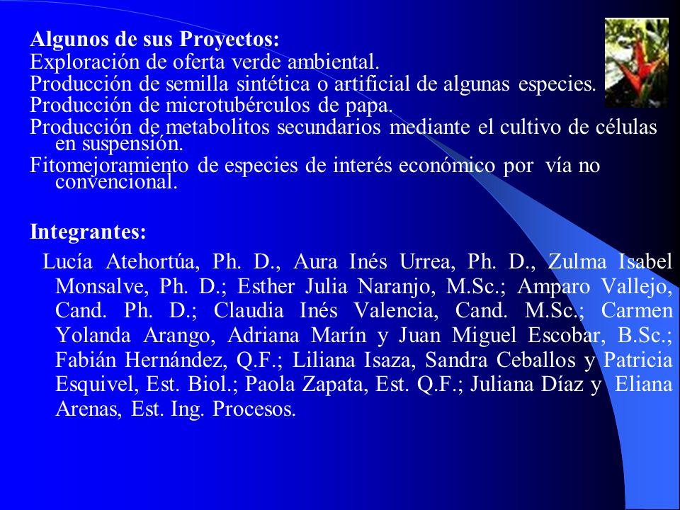 Algunos de sus Proyectos: Exploración de oferta verde ambiental. Producción de semilla sintética o artificial de algunas especies. Producción de micro