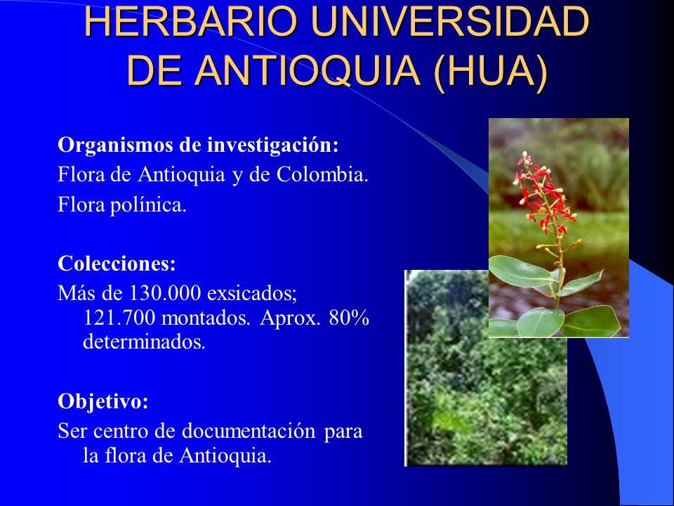 HERBARIO UNIVERSIDAD DE ANTIOQUIA (HUA) Organismos de investigación: Flora de Antioquia y de Colombia. Flora polínica. Colecciones: Más de 130.000 exs