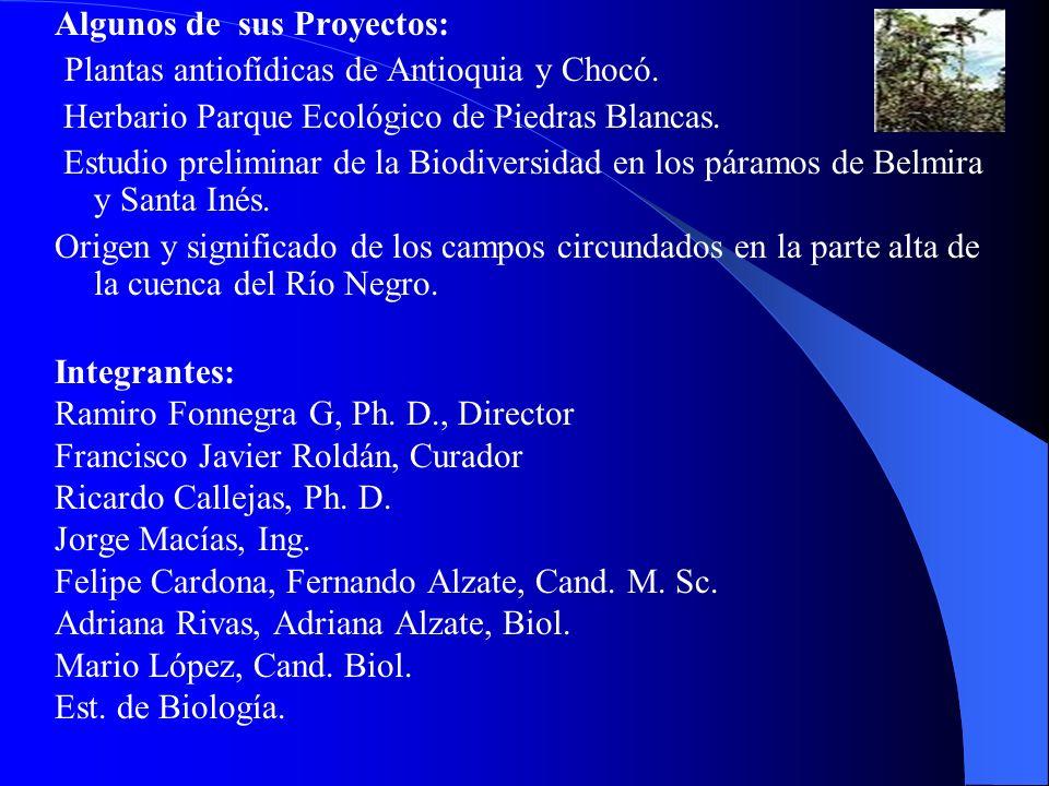 Algunos de sus Proyectos: Plantas antiofídicas de Antioquia y Chocó. Herbario Parque Ecológico de Piedras Blancas. Estudio preliminar de la Biodiversi