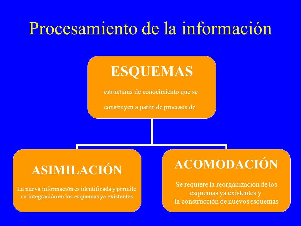 Procesamiento de la información ESQUEMAS estructuras de conocimiento que se construyen a partir de procesos de ASIMILACIÓN La nueva información es ide