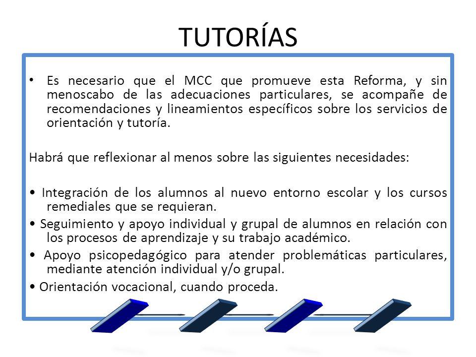 TUTORÍAS Es necesario que el MCC que promueve esta Reforma, y sin menoscabo de las adecuaciones particulares, se acompañe de recomendaciones y lineami